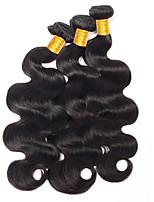 Недорогие -3 Связки Индийские волосы Естественные кудри Необработанные / Натуральные волосы Удлинитель / Пучок волос / One Pack Solution 8-28 дюймовый Нейтральный Естественный цвет Ткет человеческих волос