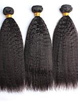 Недорогие -3 Связки Малазийские волосы Естественные кудри Натуральные волосы One Pack Solution / Плетение 10-28 дюймовый Нейтральный Ткет человеческих волос Мягкость / Женский / Натуральный