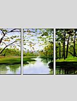 economico -Hang-Dipinto ad olio Dipinta a mano - Paesaggi / Floreale / Botanical Modern Tela / Tre Pannelli