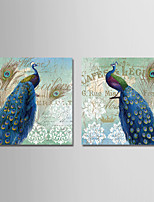 cheap -Print Stretched Canvas Prints - Animals / Vintage Theme Modern