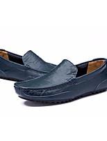 Недорогие -Муж. Кожа Весна лето Удобная обувь / Обувь для дайвинга Мокасины и Свитер Черный / Коричневый / Синий