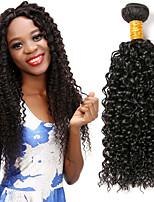 Недорогие -4 Связки Монгольские волосы курчавый 8A Натуральные волосы Человека ткет Волосы Удлинитель Пучок волос 8-28 дюймовый Естественный цвет Ткет человеческих волос Женский Удлинитель Новое поступление