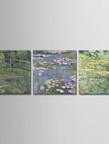 Недорогие -С картинкой Отпечатки на холсте - Известные картины / Цветочные мотивы / ботанический Modern