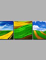 Недорогие -С картинкой Роликовые холсты / Отпечатки на холсте - Природа / Фото Винтаж / Modern