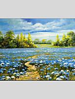 economico -Hang-Dipinto ad olio Dipinta a mano - Paesaggi / Floreale / Botanical Modern Tela
