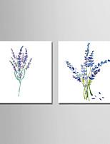 Недорогие -С картинкой Отпечатки на холсте - ботанический / Цветочные мотивы / ботанический Modern