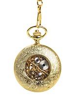 preiswerte -Herrn Taschenuhr Automatikaufzug Transparentes Ziffernblatt Armbanduhren für den Alltag Legierung Band Analog Totenkopf Modisch Gold - Gold