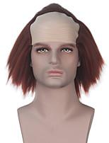 Недорогие -Косплэй парики Косплей Косплей Аниме Косплэй парики 14 дюймовый Термостойкое волокно Все Хэллоуин парики