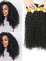 Недорогие -4 Связки Малазийские волосы Кудрявый Натуральные волосы Человека ткет Волосы / Пучок волос / One Pack Solution 8-28 дюймовый Ткет человеческих волос Машинное плетение Лучшее качество / 100