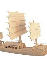 cheap -Wooden Puzzle / Logic & Puzzle Toy Chinese Ancient Ship School / Professional Level / Stress and Anxiety Relief Wooden 1 pcs Kid's / Teen All Gift