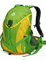 Недорогие -Jungle King 28 L Рюкзаки - Пригодно для носки, Воздухопроницаемость На открытом воздухе Пешеходный туризм, Походы Нейлон Оранжевый, Зеленый, Синий