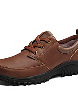 cheap -Men's Nappa Leather Winter Fluff Lining Oxfords Hiking Shoes Coffee / Light Brown