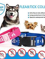 billiga -Hund / Katt Halsband Ledigt / vardag / Säkerhet Citat och ordspråk Polyester