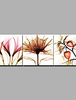 cheap -Print Rolled Canvas Prints / Stretched Canvas Prints - Botanical / Floral / Botanical Comtemporary / Modern