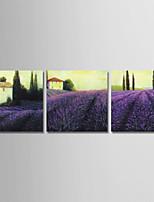 Недорогие -С картинкой Отпечатки на холсте - Романтика / Цветочные мотивы / ботанический Modern