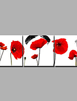 Недорогие -С картинкой Роликовые холсты / Отпечатки на холсте - ботанический / Цветочные мотивы / ботанический Винтаж / Modern