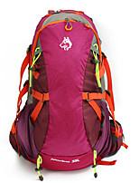 cheap -40 L Hiking Backpack - Rain-Proof, Quick Dry, Breathability Outdoor Climbing, Camping, Travel Nylon Black, Fuchsia, Navy Blue