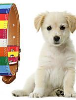 billiga -Hund Halsband Justerbara Regnbåge Polyester Regnbåge