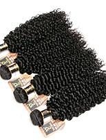 Недорогие -4 Связки Индийские волосы Kinky Curly Натуральные волосы Человека ткет Волосы / Пучок волос / One Pack Solution 8-28 дюймовый Естественный цвет Ткет человеческих волос