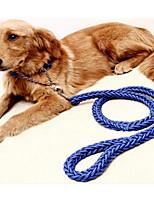 cheap -Dogs Collar / Leash Portable / Adjustable / Retractable / Foldable Solid Colored Nylon Purple / Green / Blue