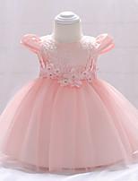 Недорогие -малыш Девочки Однотонный С короткими рукавами Платье