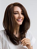 Недорогие -Синтетические кружевные передние парики Прямой Боковая часть Искусственные волосы 16 дюймовый Природные волосы Коричневый Парик Жен. Средняя длина Лента спереди Бежевый