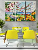 Недорогие -Холст в раме / Набор в раме - Пейзаж / Цветочные мотивы / ботанический Пластик Иллюстрации
