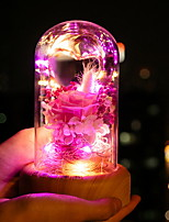 Недорогие -1шт LED Night Light USB Творчество / Новый дизайн / Меняет цвета 5 V