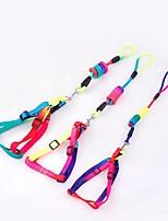 cheap -Dogs / Rabbits / Cats Dog Training Collars / Harness Portable / Mini / Trainer Rainbow Nylon Rainbow