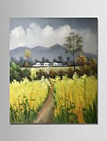 abordables -Peinture à l'huile Hang-peint Peint à la main - Paysage / A fleurs / Botanique Moderne Toile
