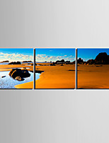 cheap -Print Rolled Canvas Prints / Stretched Canvas Prints - Beach Theme / Landscape Modern