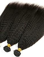 Недорогие -3 Связки Бразильские волосы Перуанские волосы Естественные прямые 8A Натуральные волосы Необработанные натуральные волосы Подарки Косплей Костюмы Головные уборы 8-28 дюймовый Естественный цвет