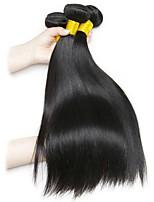 Недорогие -6 Связок Малазийские волосы / Индийские волосы Прямой Необработанные / Натуральные волосы Подарки / Человека ткет Волосы / Сувениры для чаепития 8-28 дюймовый Естественный цвет Ткет человеческих волос