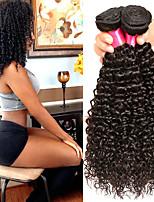 Недорогие -4 Связки Бразильские волосы Кудрявый Натуральные волосы Человека ткет Волосы Пучок волос One Pack Solution 8-28 дюймовый Нейтральный Естественный цвет Ткет человеческих волос