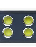 Недорогие -brelong cob high power 200w белый наружный водонепроницаемый свет наводнения 1 шт.
