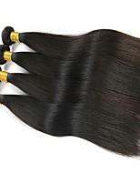 Недорогие -4 Связки Бразильские волосы Евро-Азиатские волосы Прямой 8A Натуральные волосы Необработанные натуральные волосы Подарки Косплей Костюмы Головные уборы 8-28 дюймовый Естественный цвет