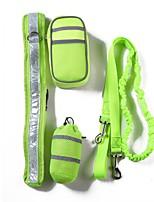 abordables -Chiens Tenue / Laisses / Entraînement Portable / Avion-école / Taille ajustable Couleur Pleine Polyester Gris / Rouge / Vert