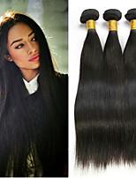 Недорогие -3 Связки Бразильские волосы Евро-Азиатские волосы Прямой 8A Натуральные волосы Необработанные натуральные волосы Подарки Косплей Костюмы Человека ткет Волосы 8-28 дюймовый Естественный цвет
