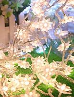 Недорогие -2,5м Гирлянды 20 светодиоды Тёплый белый Декоративная Аккумуляторы AA 1 комплект