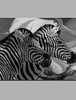 Недорогие -С картинкой Отпечатки на холсте - Животные / Halloween Современный / Modern
