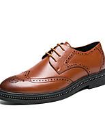 Недорогие -Муж. Кожаные ботинки Кожа Зима Деловые / На каждый день Туфли на шнуровке Нескользкий Черный / Коричневый