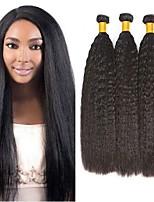 Недорогие -3 Связки Бразильские волосы Малазийские волосы Вытянутые 8A Натуральные волосы Необработанные натуральные волосы Подарки Косплей Костюмы Головные уборы 8-28 дюймовый Естественный цвет