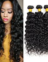 Недорогие -4 Связки Малазийские волосы Волнистые Натуральные волосы / Необработанные натуральные волосы Подарки / Удлинитель / Пучок волос 8-28 дюймовый Естественный цвет Ткет человеческих волос