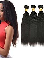 Недорогие -3 Связки Бразильские волосы / Индийские волосы Вытянутые Натуральные волосы / Необработанные натуральные волосы Подарки / Человека ткет Волосы / Аксессуары для костюмов 8-28 дюймовый Естественный цвет