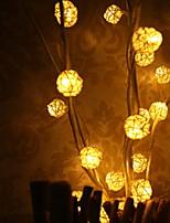 Недорогие -0.5м Гирлянды 25 светодиоды Тёплый белый Декоративная 220-240 V 1 комплект