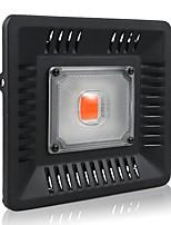 Недорогие -BRELONG® 1шт 50 W 2400 lm lm 1 Светодиодные бусины Полного спектра Растущие светильники 220-240 V