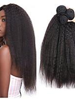 Недорогие -3 Связки Бразильские волосы Евро-Азиатские волосы Вытянутые 8A Натуральные волосы Необработанные натуральные волосы Подарки Косплей Костюмы Головные уборы 8-28 дюймовый Естественный цвет