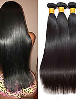 abordables -Lot de 3 Cheveux Brésiliens Cheveux Péruviens Droit 8A Cheveux Naturel humain Cheveux humains Naturels Non Traités Cadeaux Costumes Cosplay Casque 8-28 pouce Couleur naturelle Tissages de cheveux