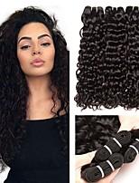 billiga -3 paket Malaysiskt hår / Indiskt hår Vattenvågor Äkta hår / Obehandlat Mänsligt hår Peruktillbehör / Huvudbonad / Human Hår vävar 8-28 tum Naurlig färg Hårförlängning av äkta hår Maskingjord Silkig