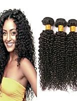Недорогие -3 Связки Бразильские волосы Монгольские волосы Kinky Curly 8A Натуральные волосы Необработанные натуральные волосы Подарки Косплей Костюмы Головные уборы 8-28 дюймовый Естественный цвет